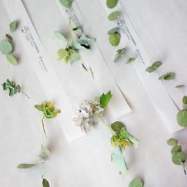 初夏的植物串掛-青楓繡球